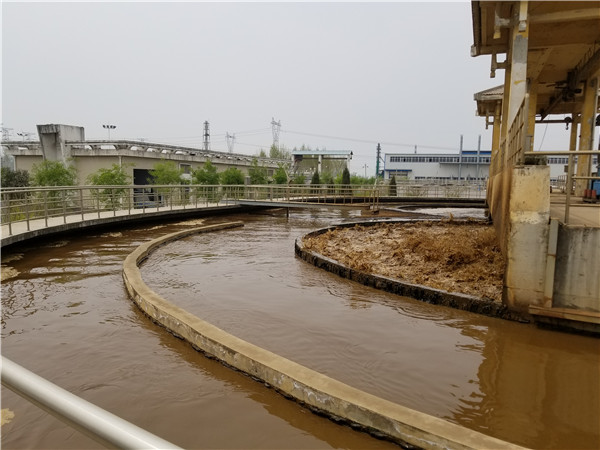 安徽省碳源葡萄糖集团