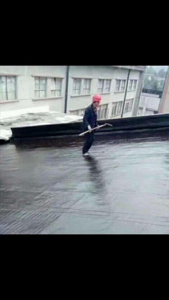 臺州透明玻璃隔熱 屋頂綠化 陜西儒億屋頂隔熱屋頂花園在線咨詢