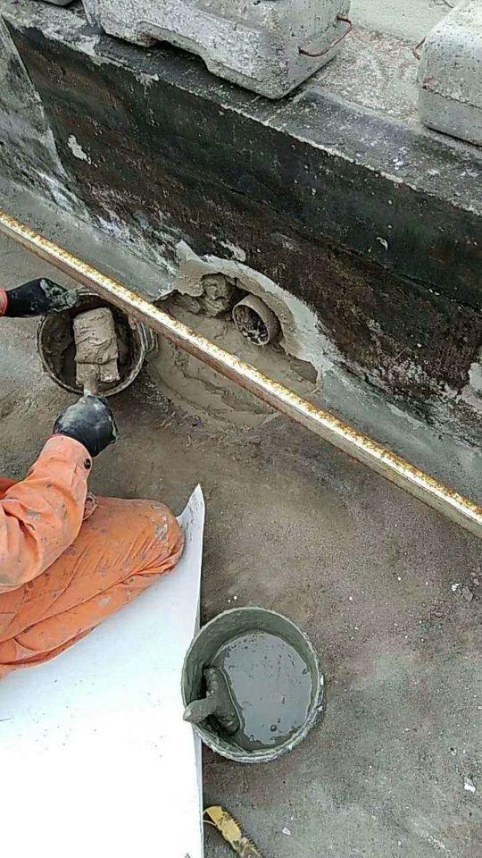 溫嶺縣透明玻璃隔熱 陜西儒億屋頂隔熱屋頂綠化在線咨詢