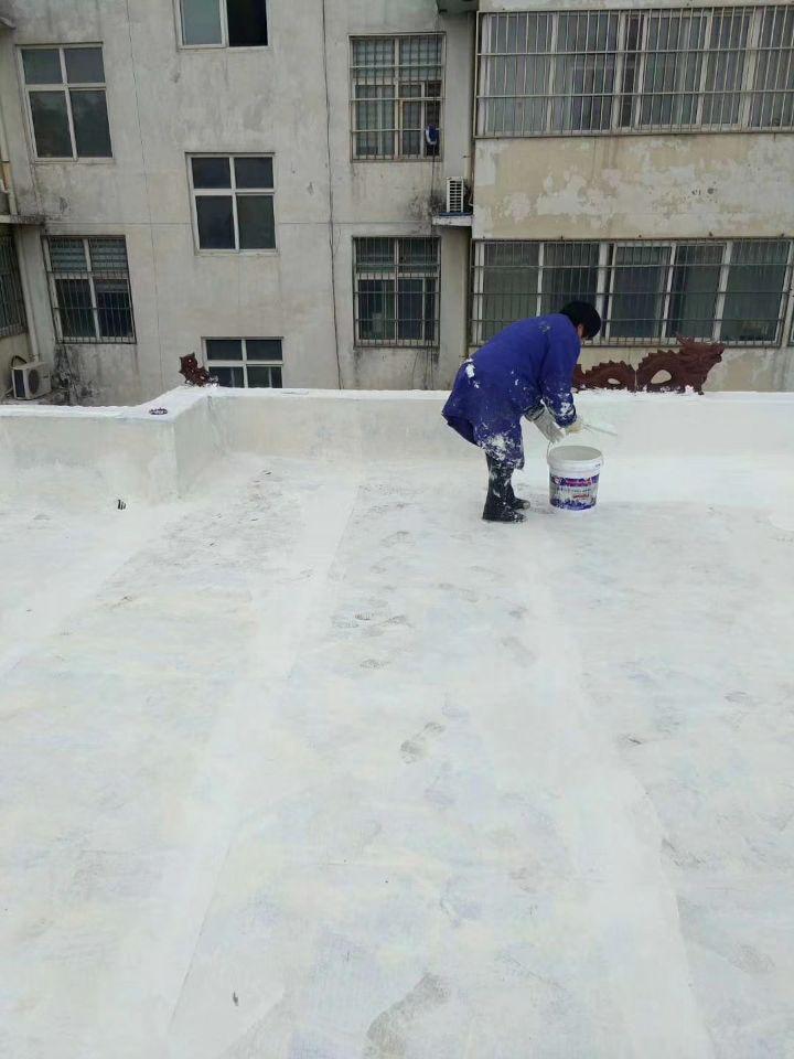 天臺市透明玻璃隔熱 陜西儒億屋頂隔熱屋頂綠化組圖