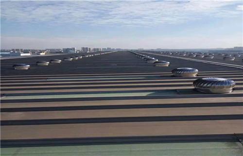 濮阳屋顶排风机现货