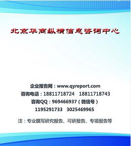 数字功放机项目可行性研究报告